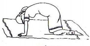 preg yoga 3.2