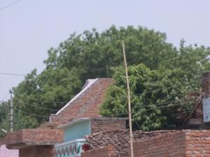 छत के ऊपर धरे बिजली के तार