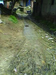 सड़क पर भरल किचर
