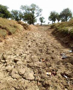 21-08-14 Kshetriya Banda - Farmers ki Sookhi Fasal for web
