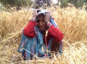 तबाह किसान, मौसम और सरकार दोनों से निराश