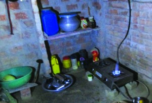 Biogas provides a useful and eco friendly substitute for fossil fuels