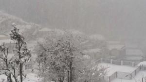 18-12-14 Mano - Winter Almora 2 (Shalini) web