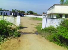 rauli klyanpur school taza web.