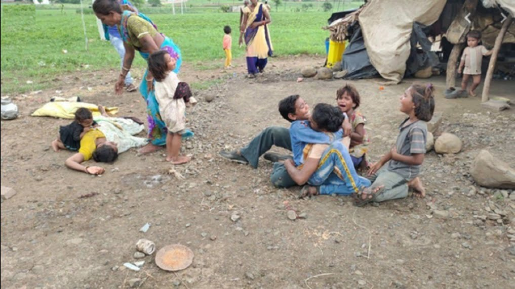 Case of bulldozers on Dalit family crop in Guna