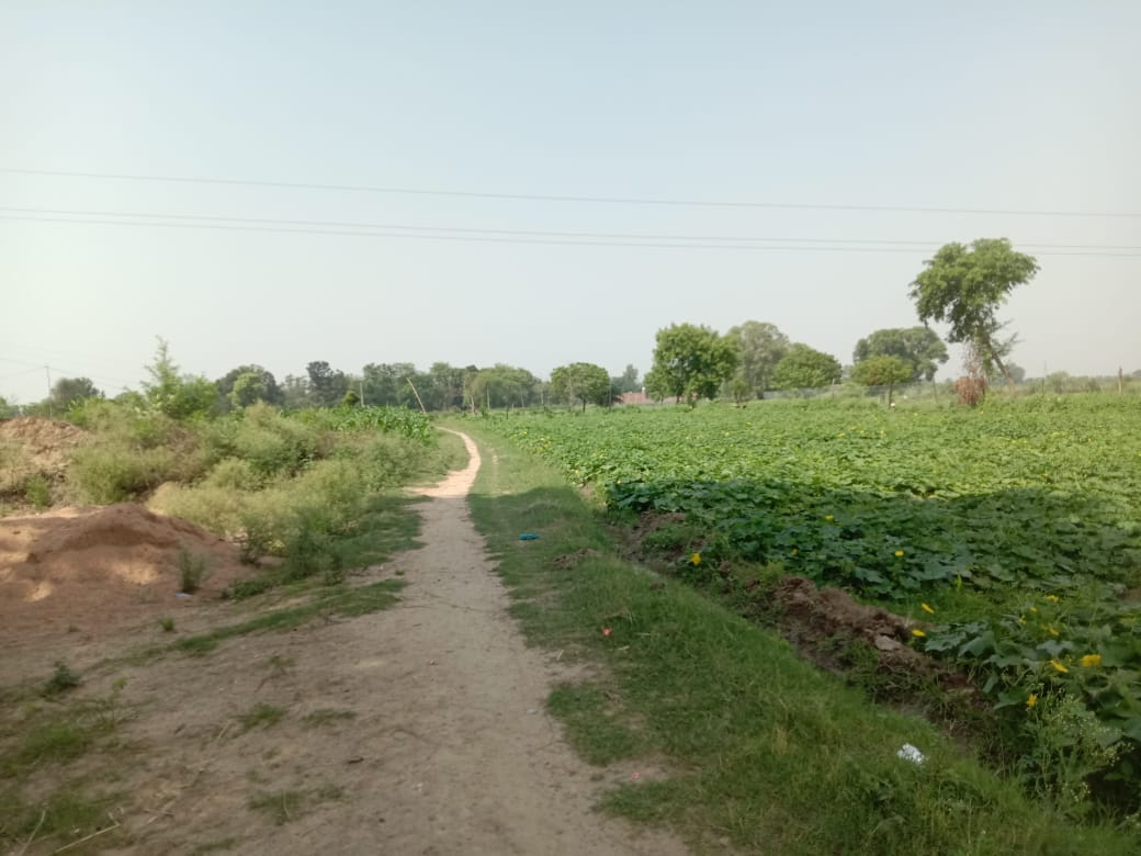 Many gram panchayats of Bundelkhand imprisoned due to lack of way
