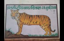 tigers day