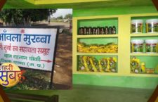 Ambala-Morabba's business opportunities for health
