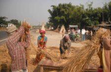 क्या बुंदेलखंड के किसानों को सामुदायिक पक्के खलिहान की जरुरत है?