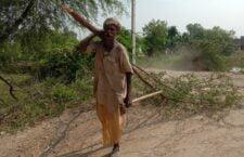 palewa farmers facing electric line cut