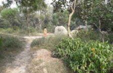 seven year old girl raped in ayodhya