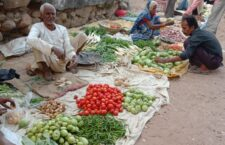 costly vegetables issues