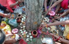 women in mahoba worshiping amla tree