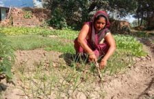 Women farmers are making a name for themselves in agriculture through their hard work