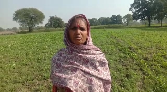 Anna animals were destroyed due to lack of cowshed, crops of farmers were wasted
