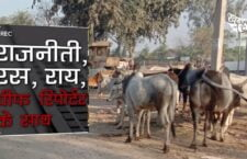 जो गाय खुद कुपोषित है वो कैसे करेंगी बच्चों का कुपोषण दूर? देखिए राजनीती रस राय में