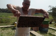 Villagers are doing beekeeping to increase income