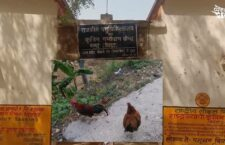 A year of poultry farming has been filled
