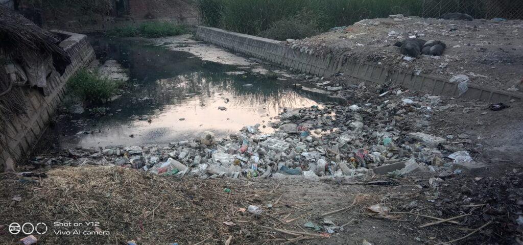 dirty ponds