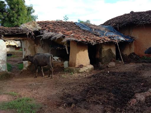 पन्ना : आदिवासी परिवारों को नहीं मिल रहा योजनाओं का लाभ, न है योजनाओं की जानकारी